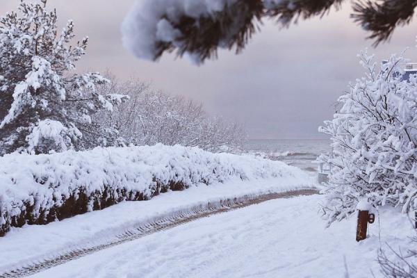 gdansk-wyspa-sobieszewska-zimowisko-z-rodzicami-120-6.jpg