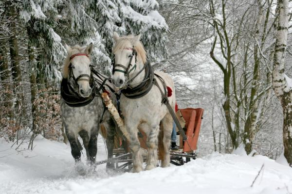 winter-fun-nartysnowboard-122-7.jpg