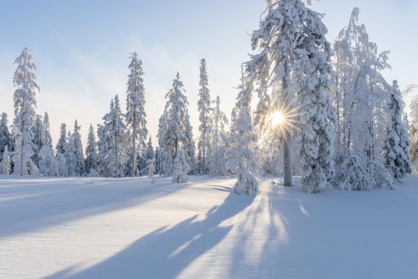 zakopane-i-bialka-t-zimowisko-z-rodzicami-123-3.jpg