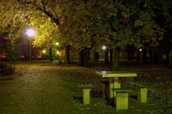 nocne-atrakcje-69-6.jpg